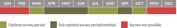 Survey calendar for reptiles